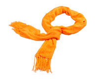Beautiful scarf. For this winter royalty free stock image