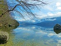Beautiful Scenario at Bohinj Lake. Scenic view and beautiful nature at Bohinj Lake, Triglav National Park Stock Photography