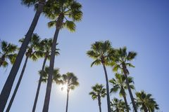 Beautiful scene around Rainbow Harbor. Long Beach, California, U.S.A Royalty Free Stock Images