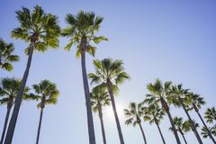 Beautiful scene around Rainbow Harbor. Long Beach, California, U.S.A Royalty Free Stock Photo