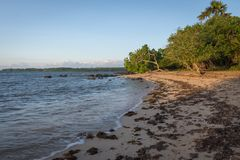 Beautiful scene of Bama Beach, Baluran. Baluran National Park is a forest preservation area that extends about 25.000 ha on the. North coast of East Java royalty free stock photos