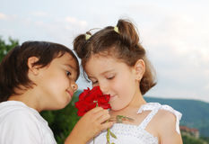 Beautiful scene of a boy and girl Stock Images
