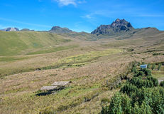 Beautiful scene of the Ecuadorian Andes. On a sunny day Royalty Free Stock Images