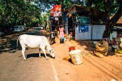 Travel in India. Beautiful scene in Goa, India Royalty Free Stock Photo