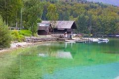 Beautiful scene and green nature in Lake Bohinj