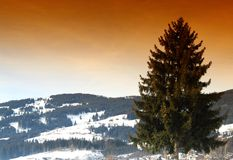 Beautiful Scene in Kirchberg, Austria Royalty Free Stock Image