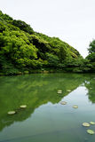 Beautiful scene of lush green japanese garden landscape with shades of green plant mountain, lotus pond, etc. Stock Photo