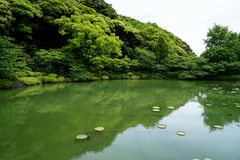 Beautiful scene of lush green japanese garden landscape with shades of green plant mountain, lotus pond and water reflection Royalty Free Stock Photos