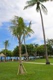 Beautiful Scene and nature in Bali Resort Stock Photography