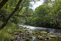 A river in the Brecon Beacons Wales royalty free stock images