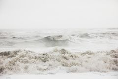 Beautiful scenery of amazing strong ocean waves during misty weather in the countryside. The beautiful scenery of amazing strong ocean waves during misty weather royalty free stock images