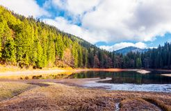 Beautiful scenery around the Synevyr lake. Tall trees around the body of water in mountains. lovely autumn weather with cloudy sky Stock Photography