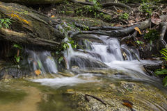 Beautiful scenery of cascaded river flowing through tropical forest Stock Photography