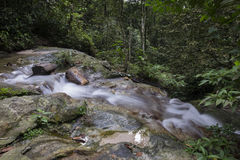 Beautiful scenery of cascaded river flowing through tropical forest Royalty Free Stock Images