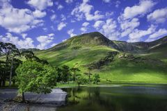 Beautiful scenery of English Lake District. In springtime.Tree growing on lakeshore, mountain peak with green slopes and blue sky with clouds above.Pristine royalty free stock images