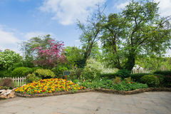 Beautiful scenery of a garden Stock Image