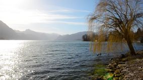 Beautiful scenery at lake Traunsee in Gmunden Upper Austria in spring vintage. On a warm morning in spring stock video footage