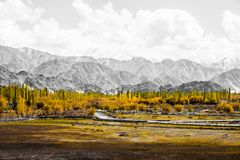 Beautiful scenery, Leh, Ladakh, Jammu and Kashmir, India Stock Photo