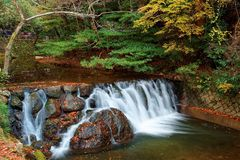 Beautiful scenery of a lovely waterfall tumbling down a rocky stream with colorful autumn foliage. By the riverside and fallen leaves on the rocks in Minoh royalty free stock photo