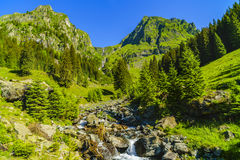Beautiful scenery with a mountain river in the Fagarasi Mountain Royalty Free Stock Image