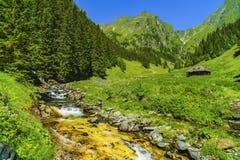 Beautiful scenery with a mountain river in the Fagarasi Mountain Royalty Free Stock Photos