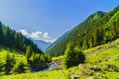 Beautiful scenery with a mountain river in the Fagarasi Mountain Stock Photos