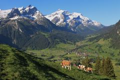 Beautiful scenery near Gstaad Stock Photography