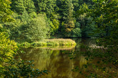 Beautiful scenery prospects around Rursee Stock Images