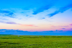The beautiful scenery of Qinghai lake at sunset, Heimahe township, Qinghai province, China Royalty Free Stock Photography
