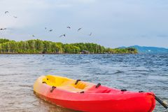 Beautiful scenery of the red hawks while flying to find food with kayaks floating in the sea at Bang Chan village The No-Land. Village in Chanthaburi, Thailand stock photography