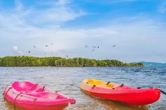 Beautiful scenery of the red hawks while flying to find food with kayaks floating in the sea at Bang Chan village The No-Land. Village in Chanthaburi, Thailand stock image