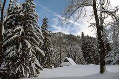 Beautiful scenery of snowy mountains.  Stock Photo
