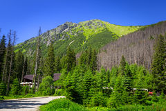 Beautiful scenery of Tatra mountain Royalty Free Stock Images
