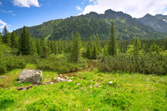 Beautiful scenery of Tatra mountains Stock Photos
