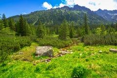 Beautiful scenery in Tatra mountains, Poland Royalty Free Stock Photo