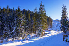 Beautiful scenery of Tatra mountains at snowy winter Royalty Free Stock Photos