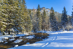 Beautiful scenery of Tatra mountains at snowy winter Royalty Free Stock Photography