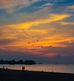 Beautiful scenery of tropical sunrise Stock Image