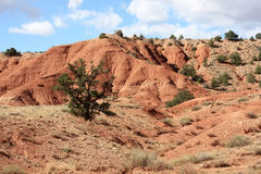 Beautiful scenery of Utah. Scenery of Utah's Capitol Reef National Park Stock Photos
