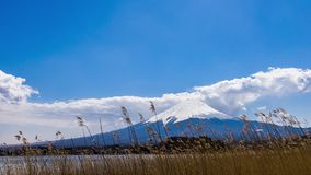 Beautiful scenery View of Mount Fuji at kawaguchiko, Japan in the sunny day with moving cloud. Lake kawaguchi is a very popular for tourists and photographers stock video