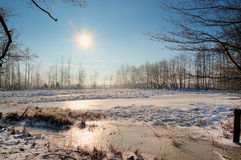 Beautiful scenery. In the winter time the scenery of coldness is very beautiful in the sun Stock Photos