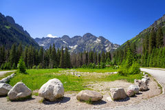 Beautiful scenery of Wlosienica meadow in Tatra mountain Stock Photo
