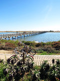 Beautiful Nature Scenery, Wooden Bridge, River, Bikes Royalty Free Stock Photography