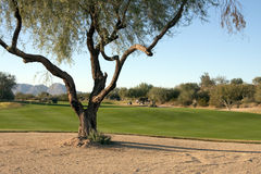 Beautiful Scenic Arizona Golf Course Resort Royalty Free Stock Photography