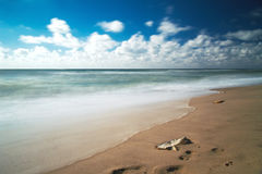 Beautiful scenic beach Royalty Free Stock Photo