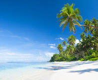 Beautiful scenic beach Stock Photography