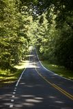 Beautiful scenic country road curves in forest Royalty Free Stock Photography