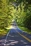 Beautiful scenic country road curves through Shenandoah  Nationa Stock Photo