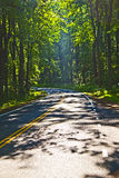 Beautiful scenic country road curves through Shenandoah  Nationa Stock Photography