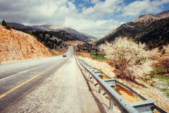 Beautiful scenic highway in mountains. Car rides on asphalt surf Stock Photos